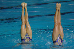Synchro 023 Stock Photo