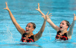 synchro brittiska simmare Royaltyfri Foto