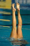 Synchro swimming 01. A female synchronised swimmer's legs point up out of the water Royalty Free Stock Image