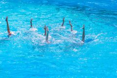 Synchronised swimming. Beautiful lean female legs in the water of a swimming pool. Concept of beauty, artistry. Athleticism and synchronicity royalty free stock image
