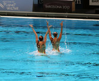 Synchronised Swimming Stock Image