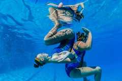 Synchronized Swim Pairs Underwater  Stock Photo