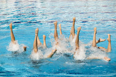 Synchronized swimmers Royalty Free Stock Image