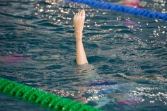 Synchronized Swimmers point up out of the water in action. Synchronized swimmers legs movement. Synchronized swimming team stock images