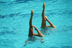 Synchronized swimming duet during competition. Synchronized swimming duet during  competition Royalty Free Stock Image