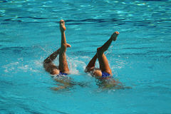 Synchronized swimming duet during competition Royalty Free Stock Photography