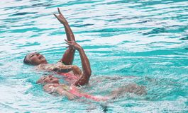 Synchronized swimming Stock Images