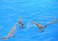 Synchronized swimming. Three  girls synchronized swimming team performing Royalty Free Stock Photo