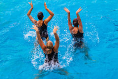 Synchronized Girls Pool Three. Girls women team performing their dance routine in the water with three girls in the color horizontal frame doing their dance Stock Images