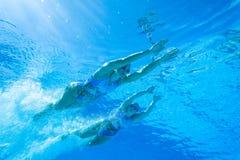 Synchronizować Drużynowe Pływackie dziewczyny Zdjęcia Stock