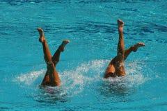 Synchronschwimmenduo während des Wettbewerbs Lizenzfreies Stockbild