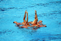 syncronised заплывание Стоковая Фотография