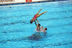 syncronised simning arkivfoto