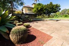 Syndey ogród botaniczny zdjęcia royalty free