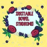 Syndrom för retlig tarm för handskrifttext Begreppet som betyder att gälla för oordning som är buk-, smärtar, och den blom- krans royaltyfri illustrationer