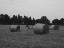 Syndykat żniwo słoma rolnictwo Zdjęcie Stock