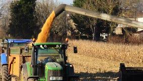Syndykata żniwiarz w polu kukurudza zdjęcie wideo