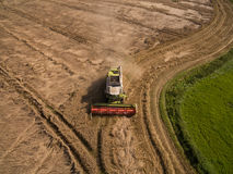 Syndykata żniwiarz - widok z lotu ptaka nowożytny syndykata żniwiarz przy zbierać banatki na złotym pszenicznym polu w lecie Zdjęcie Royalty Free