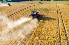 Syndykaty i ciągniki pracuje na pszenicznym polu Zdjęcia Royalty Free