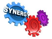 synergia Fotografia Stock