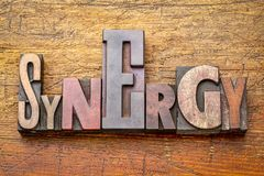 Synergy - word abstract in wood type. Synergy - word abstract in vintage letterpress wood type against rustic wooden background Stock Images