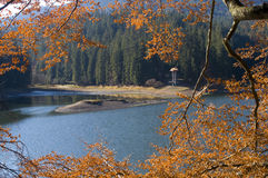 Synevyr Lake in autumn Royalty Free Stock Photography