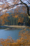 Synevyr Lake in autumn season Royalty Free Stock Photography