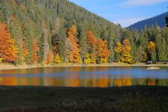 Synevyr mountain lake in Carpathian mountains, Ukraine Royalty Free Stock Photography