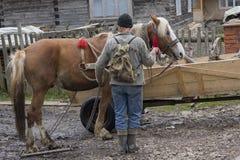 Synevyrska Polyana, Ucrania - 21 de abril de 2016: El granjero puso el hor Foto de archivo