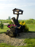 Synklina dla ptaków na driftwood Obrazy Royalty Free