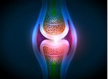 Synovial joint anatomy abstract bright design Stock Photos