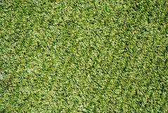 Syntethic green grass Royalty Free Stock Photos