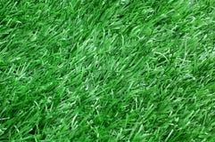Syntetisk gräsbakgrund Arkivbild