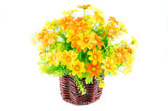 Synthesis flower on wooden vase. On isolated Stock Photos