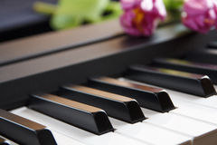 Synthesizer keyboard with purple flowers Royalty Free Stock Photography