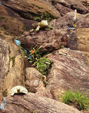 Synthetic animals. On the Rocks in the garden landscape photo Stock Photos
