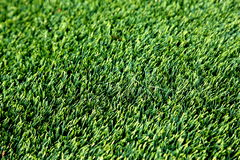 Synthetic Grass Stock Image