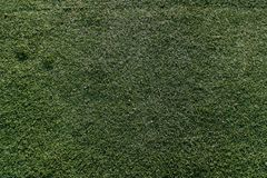 Synthetic grass. Texture HD - outdoor Royalty Free Stock Photography
