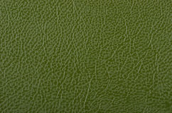 Synthetic leather background Stock Image