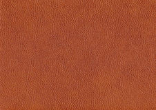 Synthetic leather structure Royalty Free Stock Image
