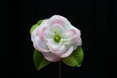 Synthetische bloem Stock Afbeelding