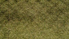 Synthetisches Gras Lizenzfreies Stockbild