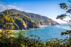 Synvinkel för delstatspark för Heceta huvudfyr scenisk i Florence, Oregon arkivfoton