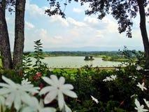 Synvinkel i Chiang Rai Arkivfoton