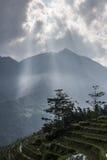 Synvinkel med solstrålen Arkivbilder