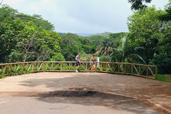 Synvinkel på den Chamarel vattenfallet mauritius Arkivbilder