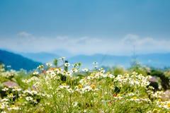 Synvinkel på monjamsemesterorten Royaltyfri Foto