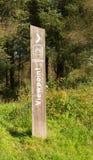 Synvinkeln undertecknar in lantlig skogsbevuxen landsbygd med gräs och träd 180 grad sikt Royaltyfri Bild