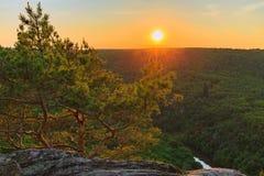 SynvinkelSealsfields sten av nationalparken Podyji i Tjeckien royaltyfri foto