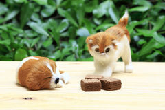 Sypialny pies i kot patrzejemy opłatek z czekoladową śmietanką zdjęcie stock